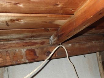 小屋裏に浸水の跡もありカビも発生