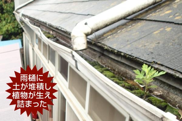 雨樋の詰まり 修理  四日市街の屋根やさん