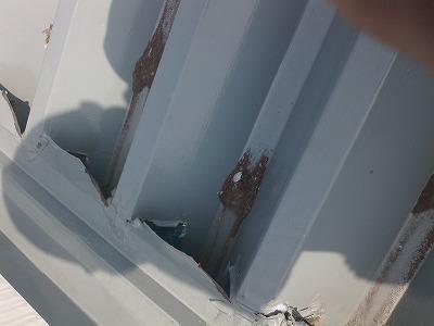 ヤギカフェ 金属屋根 穴あき 雨漏り 修理