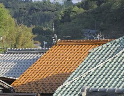 松阪市、防風林の付近屋根