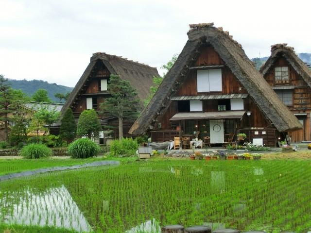 岐阜県白川村の合掌造りの家と田