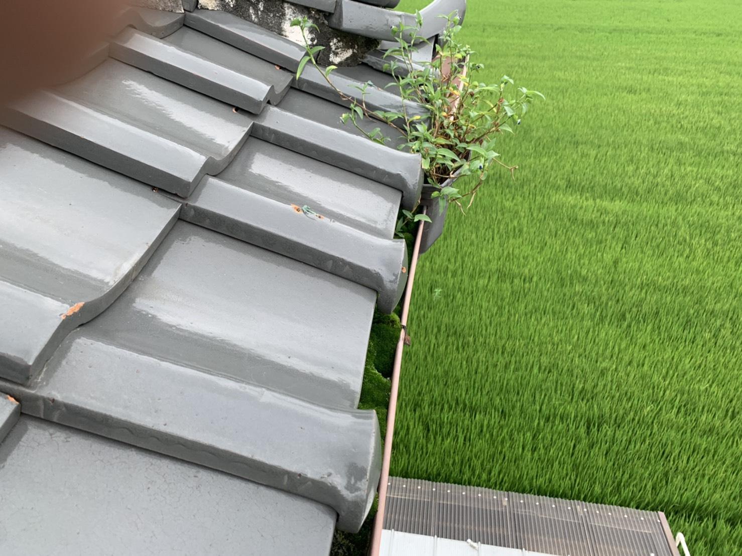 桑名市の雨漏り調査、屋根の無料点検