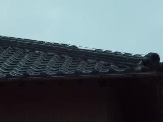 棟瓦 街の屋根やさん四日市店