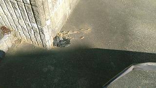 瓦落下 破損 街の屋根やさん四日市店
