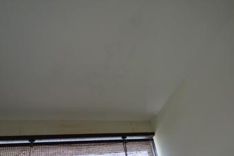 白い天井には目地に沿って変色が見られる。