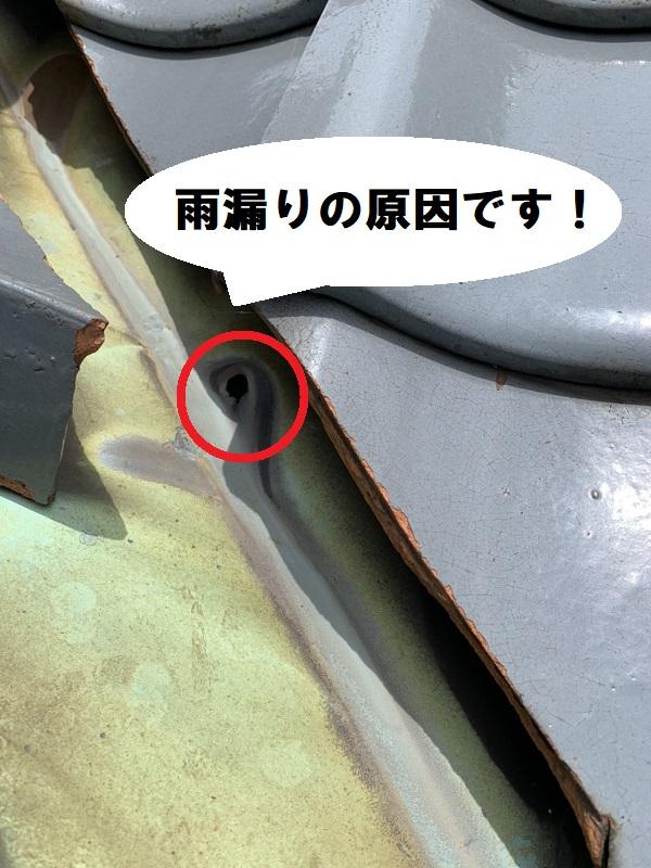 谷樋(たにどい)の穴