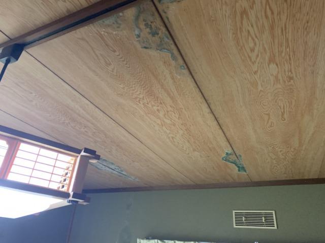 雨漏れ、天井
