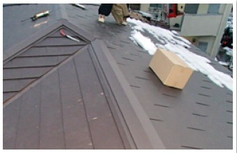 スパーヒランビーハイブリットの屋根